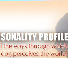 Canine Personality Profile